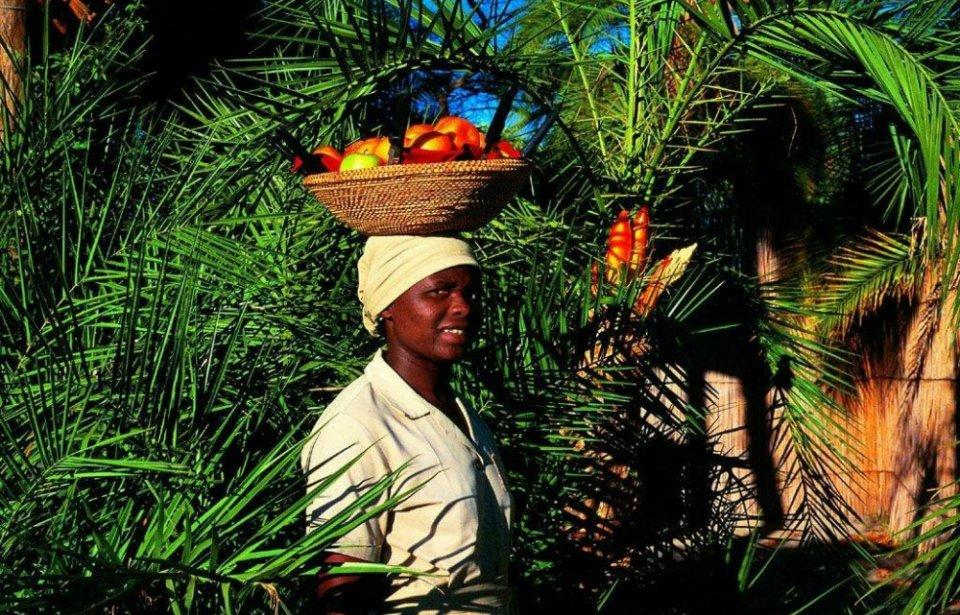 Hedelmien kuljettaja Botswanassa