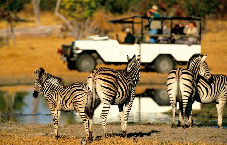 Seeproja Krugerin kansallispuistossa, Mpumalanga