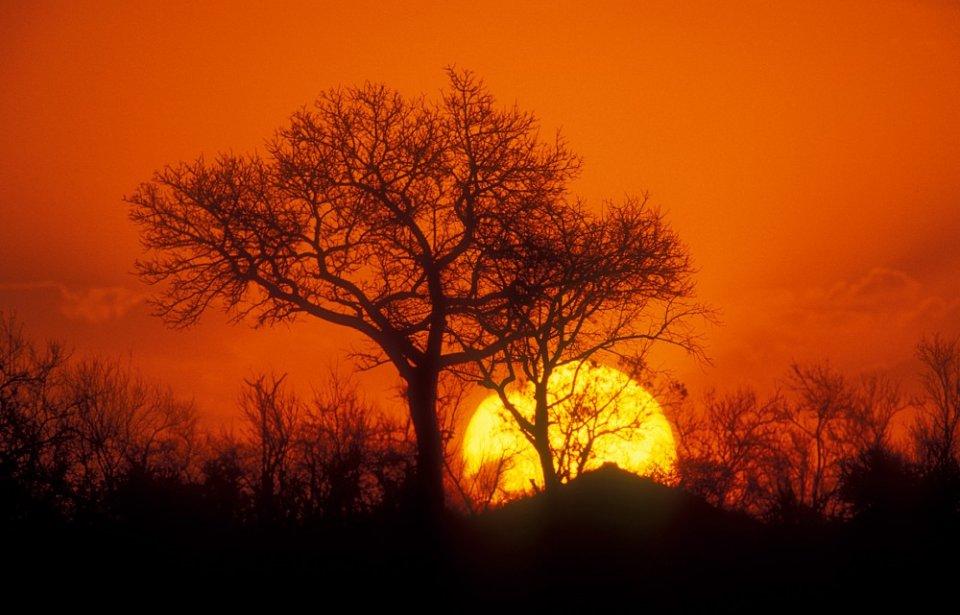 Auringonlasku Krugerin kansallispuisto, Mpumalanga