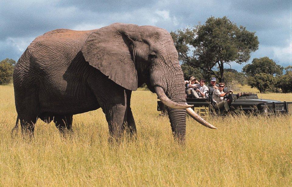 Mala Mala game reserve, Krugerin kansallispuisto, Mpumalanga