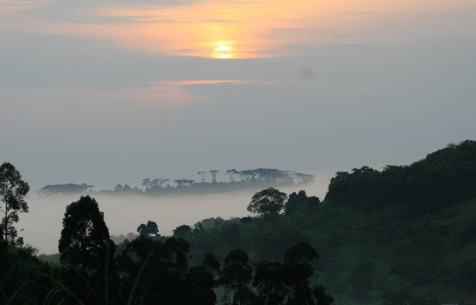 Kibale Forest National Park, Uganda