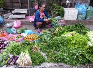 Paikallisia vihanneksia