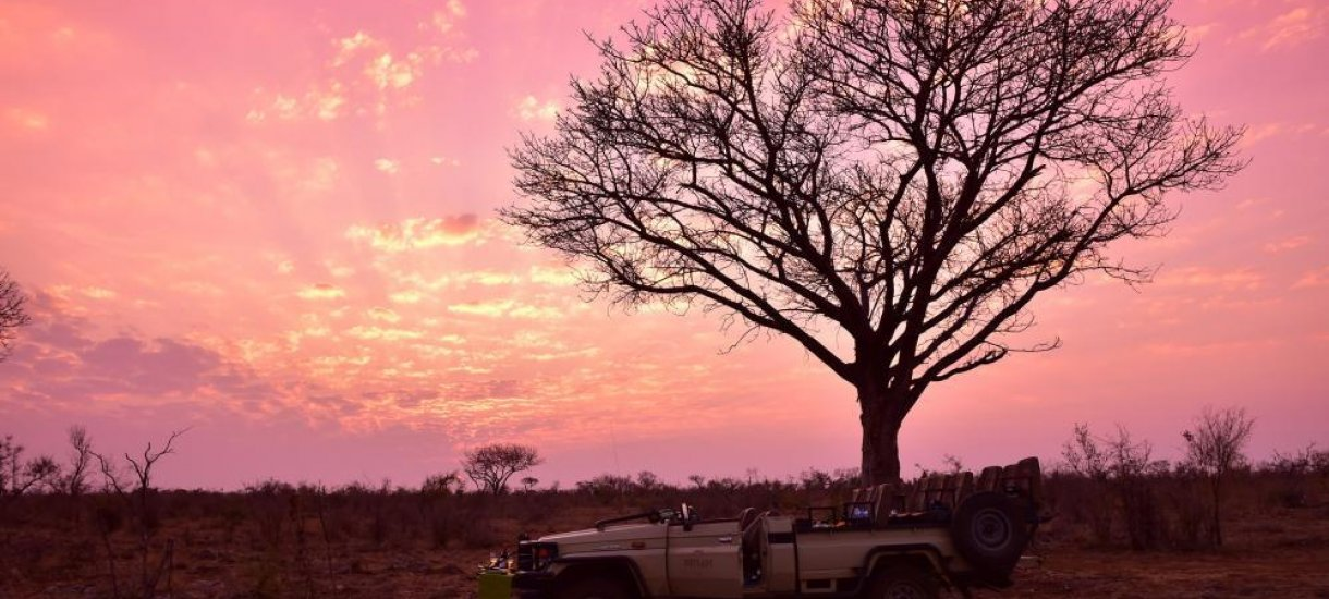 Etelä-afrikka, räätälöity, yksilöllinen, afrikka, auringonlasku, safari
